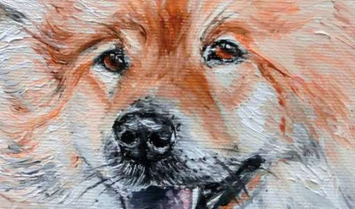 Faszination Tiermalerei
